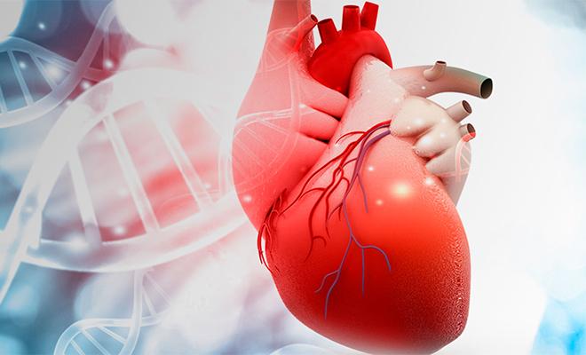 Cardiovasculares condiciones