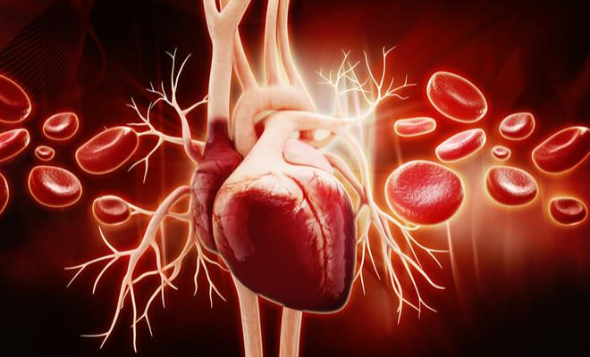 ¿Qué es la miocardiopatía hipertrófica?
