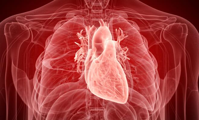 Todo sobre la endocarditis de Libman – Sacks