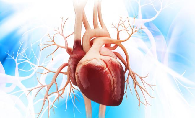 Ductus arterioso: causas y síntomas