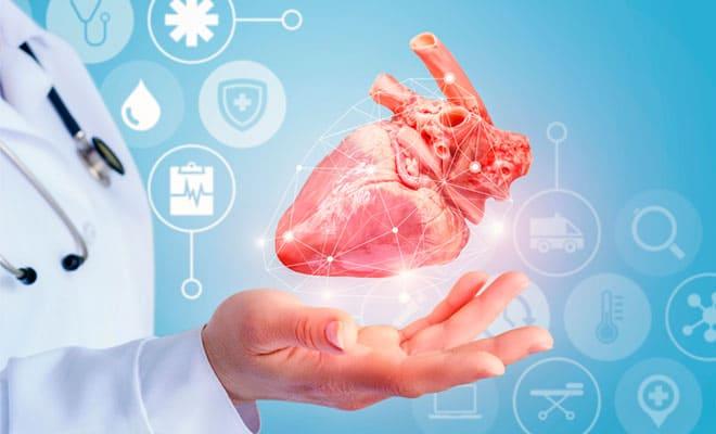 Conoce qué es el tronco arterial