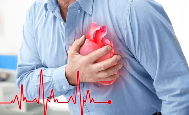 Las células del pez cebra regenerarían el corazón tras un infarto