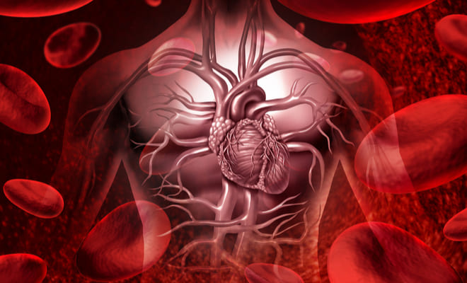 Enfermedad coronaria: causas, síntomas y tratamiento