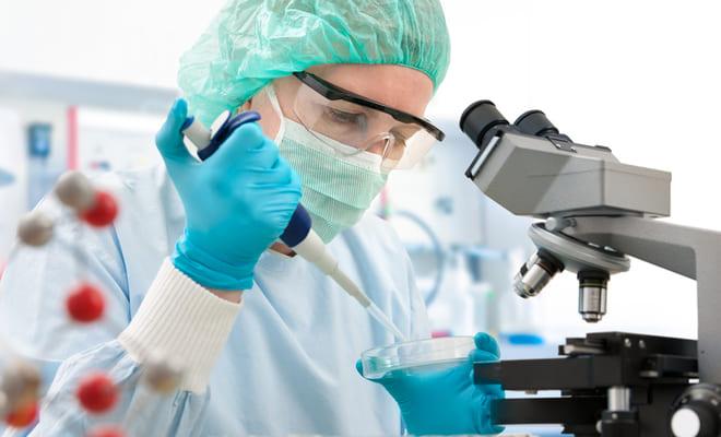 Células madre donadas ayudarían al corazón infartado