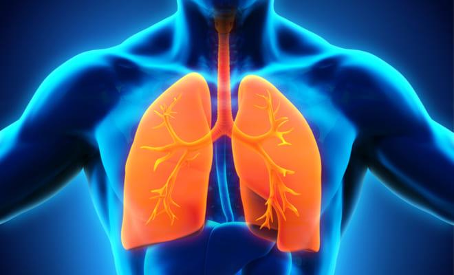 Todo sobre la enfermedad pulmonar obstructiva crónica (EPOC)