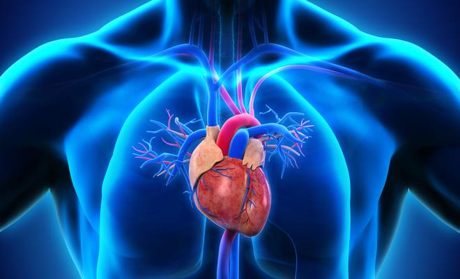Todo sobre el síndrome del corazón izquierdo hipoplásico