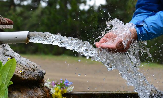 Agua contaminada con arsénico modificaría la estructura del corazón