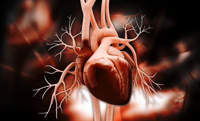 Choque cardiógeno: qué es, causas, síntomas y tratamientos