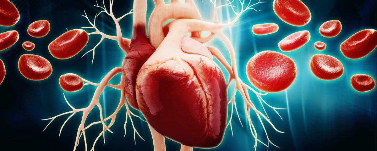 Disfunción del nódulo sinusal: causas, síntomas y tratamientos
