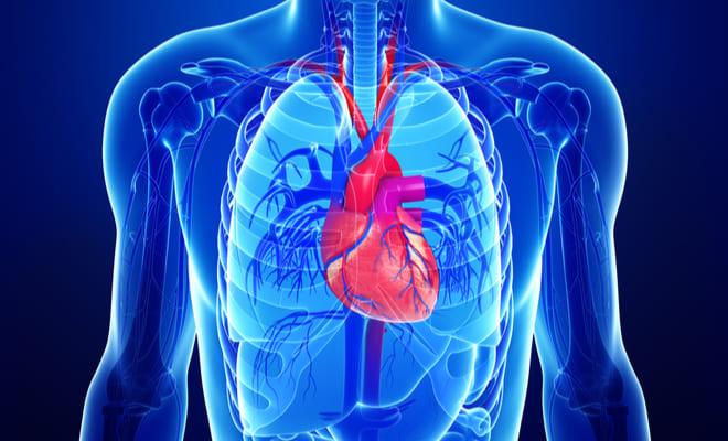 ¿Qué son las enfermedades valvulares del corazón?