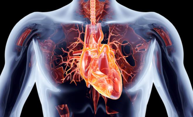 Síndrome coronario agudo: prevalente y preocupante trastorno